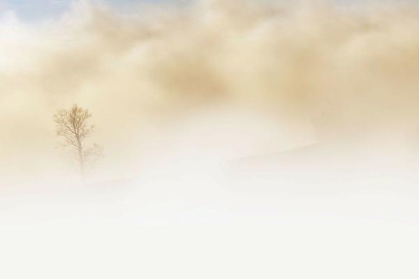 Gusto e olfatto: vittime inattese del Covid-19