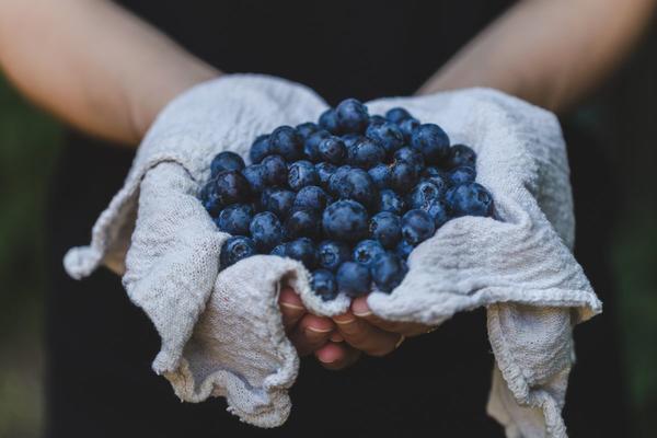 Mangiare poco allunga la vita: ecco il perché