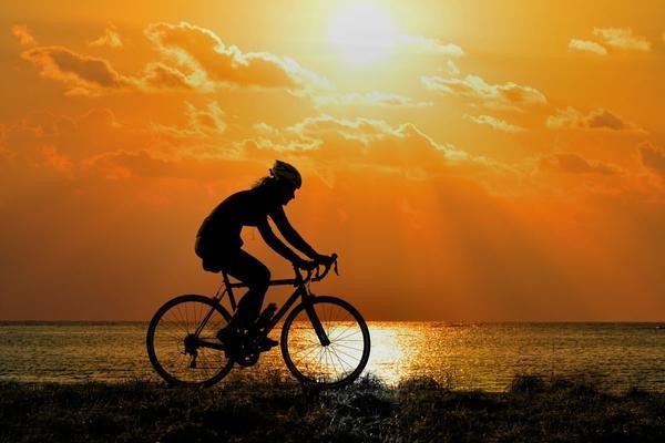 Sport: il fattore più potente per cervelli in forma